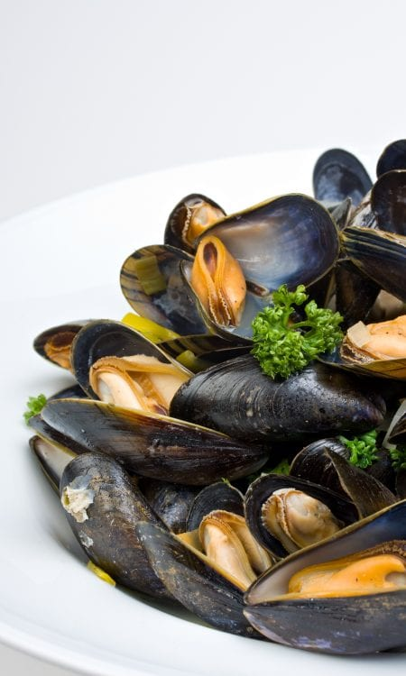 Rope mussels with white wine cream